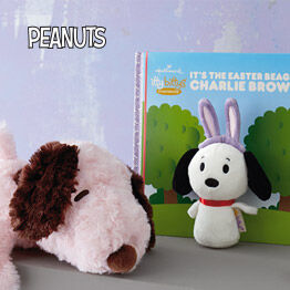 Peanuts stuffed animals and book