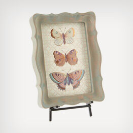 Heritage butterfly framed art
