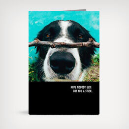 Dog with stick birthday card