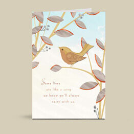 Hallmark cards help you express your care, concern and sympathy.