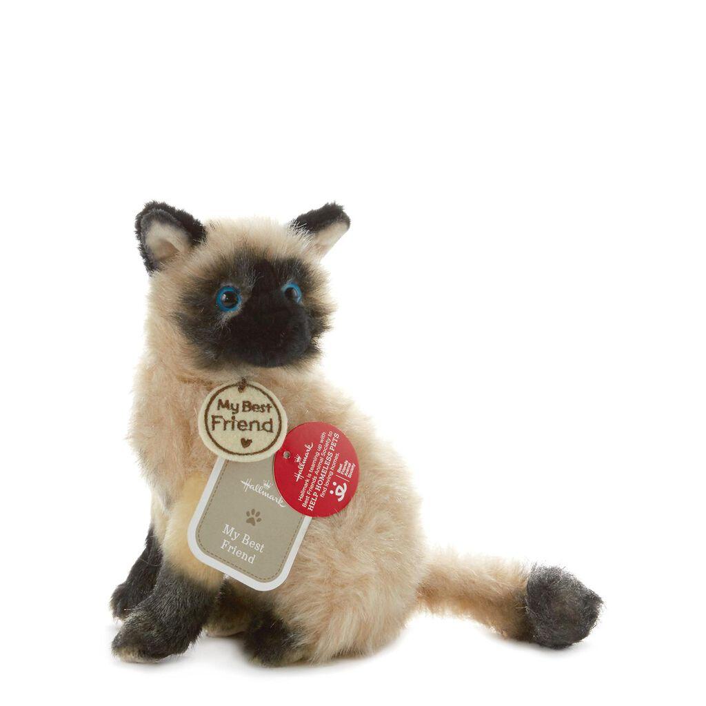 b5784de97565 Seal Point Cat Small Stuffed Animal - Classic Stuffed Animals - Hallmark