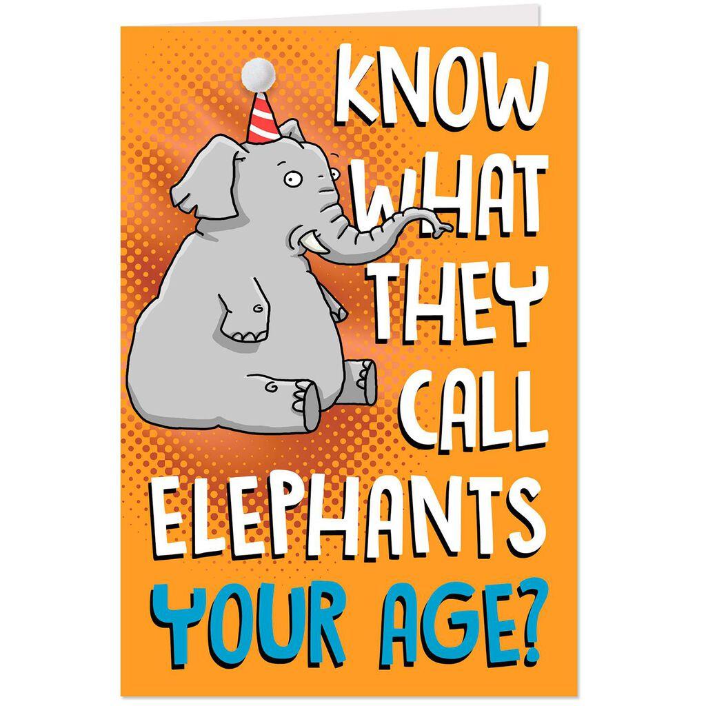 Party Elephant With Pom Hat Birthday Card