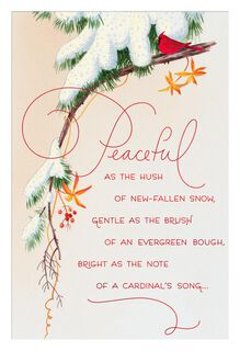 Cardinal on Branch Christmas Card,