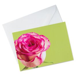 Photo of Pink Rose Thank You Notes, Pack of 10, , large