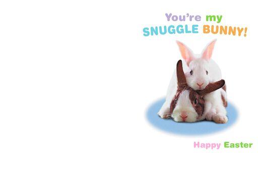 Snuggle Bunny Romantic Easter Card,