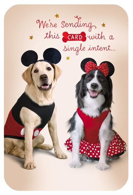 Disney Mickey And Minnie Dogs In Costume Birthday Card Greeting