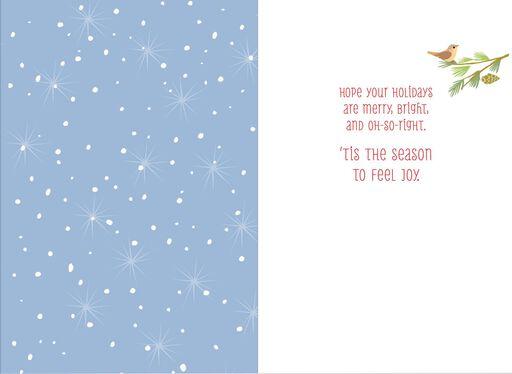 Snow Wonderful Christmas Card,