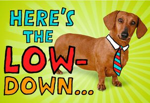 Wiener Dog Musical Father's Day Card