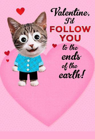 romantic cat valentines day card - Cat Valentines Day