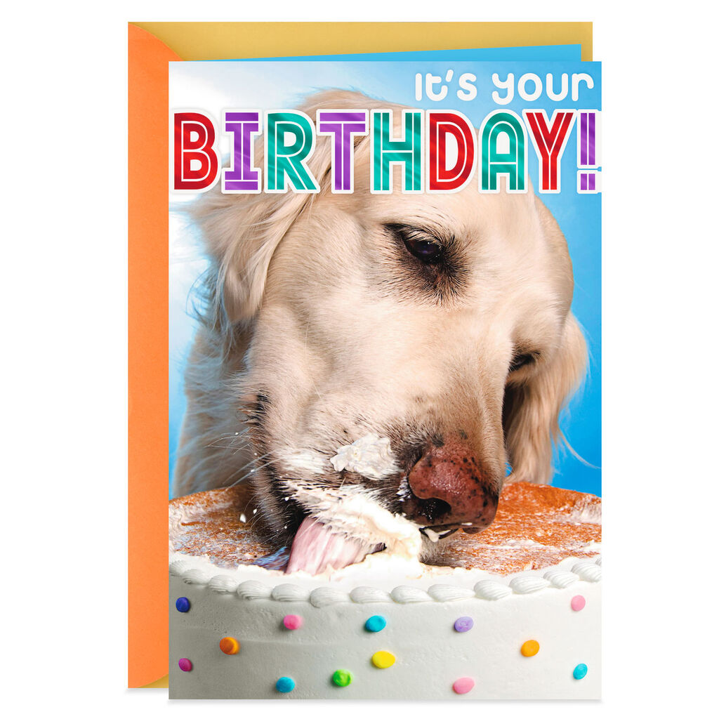 Cake Eating Dog Funny Birthday Card