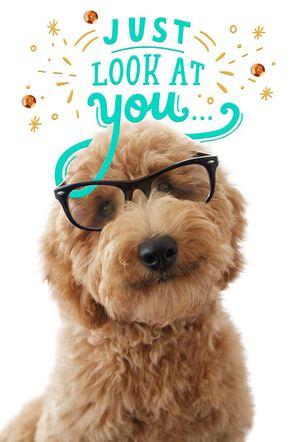Brainiac Puppy Congratulations Card