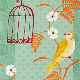 Bird Cage Blank Card,
