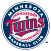 Major League Baseball™ Personalized Book, Minnesota Twins, swatch