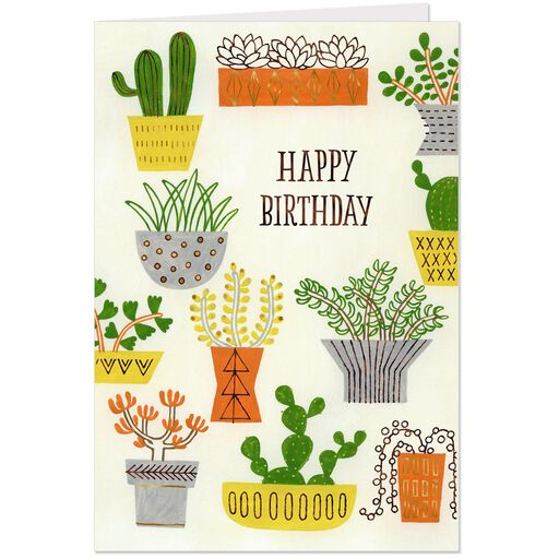Collection Of Cacti Birthday Card