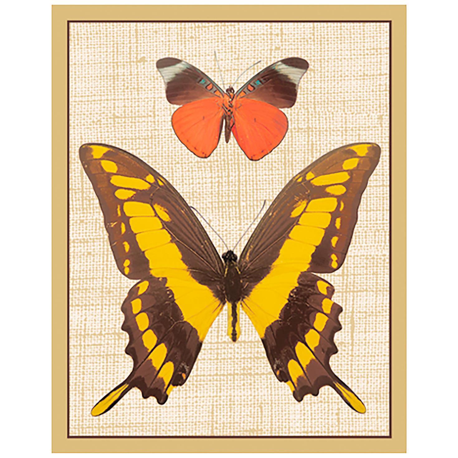 picture regarding Printable Bridge Tallies named Caspari Deyrolle Butterflies Style Bridge Tally Sheets, Mounted of 12