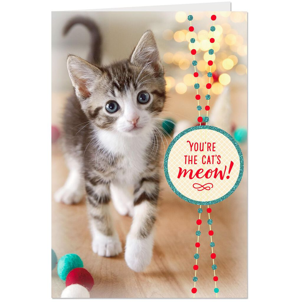 You\'re the Cat\'s Meow Christmas Card From the Cat - Greeting Cards ...