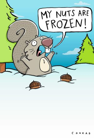 Frozen Nuts Funny Christmas Card