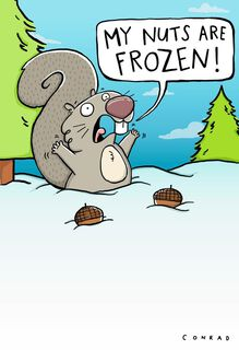 Frozen Nuts Funny Christmas Card,