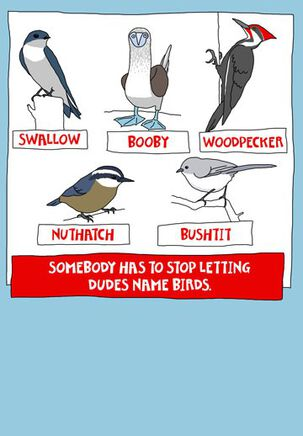 Don't Let Dudes Name Birds Funny Birthday Card