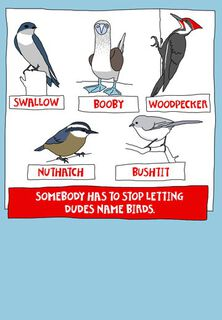 Don't Let Dudes Name Birds Funny Birthday Card,