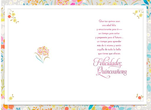 Quinceaera cards hallmark more lovely every year spanish language quinceaera card m4hsunfo Image collections