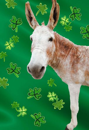 Big-Ass Donkey Funny St. Patrick's Day Card