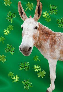 Big-Ass Donkey Funny St. Patrick's Day Card,