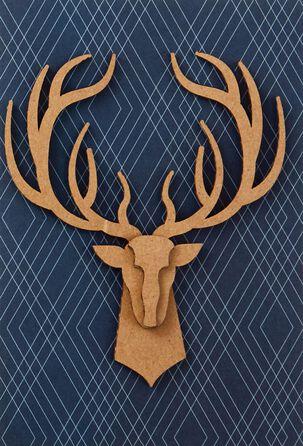 14-Point Buck Trophy Father's Day Card