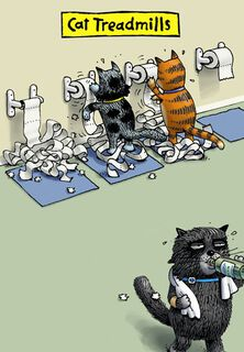 Cat Treadmills Funny Blank Card,