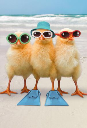 Three Hot Chicks Funny Get Well Card