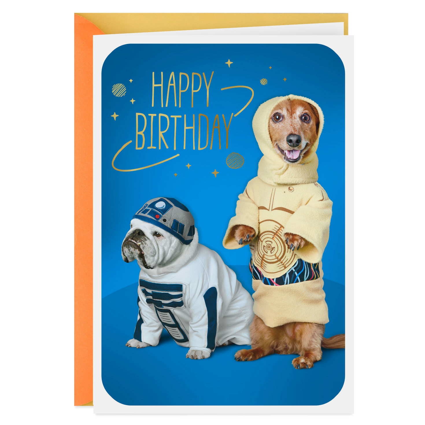 photo about Dog Birthday Cards Printable Free titled Birthday Playing cards BDay Playing cards Hallmark