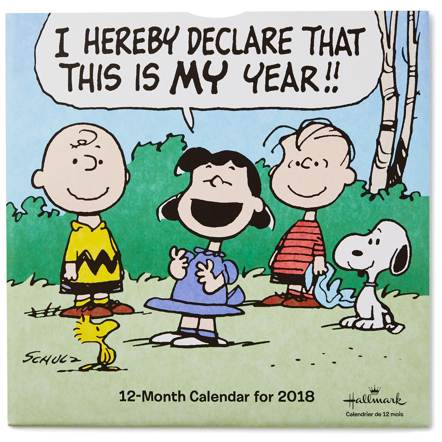 Wall Calendars and Perpetual Desk Calendars | Hallmark