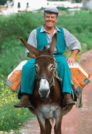 Man Riding a Donkey Father's Day Card