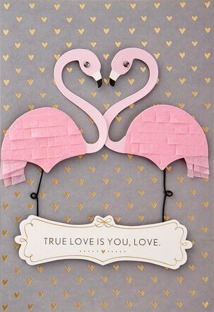True Love Flamingos Birthday Card