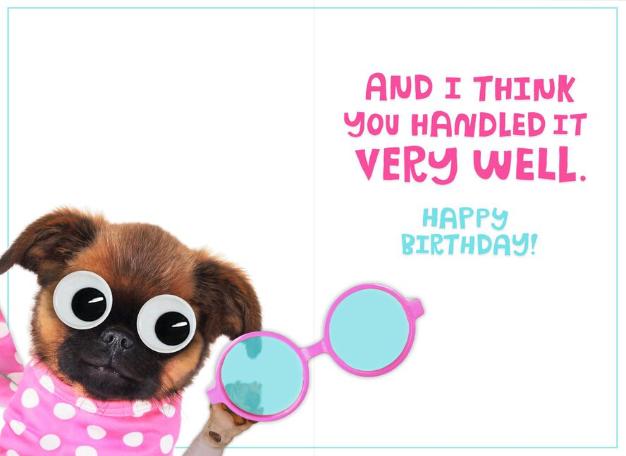 Pug With Glasses Funny Birthday Card For Sister Greeting Cards