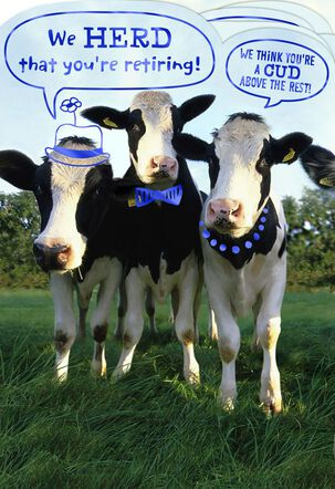 """The Word From the """"HERD"""" Funny Retirement Card From Group"""