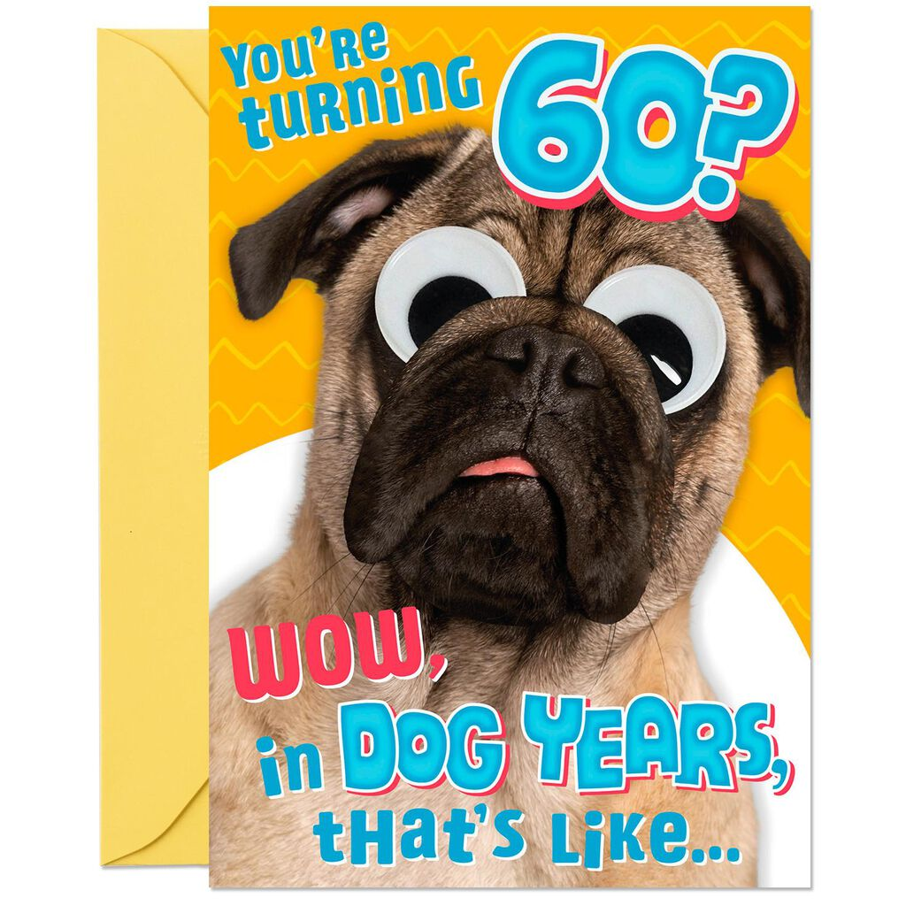 Funny Dog Years 60th Birthday Card