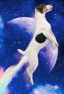 Dog Farting Rainbows Funny Birthday Card,