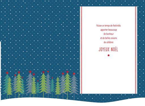 Joyeux Noel French-Language Christmas Card,
