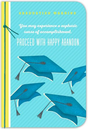 Graduation Caps in the Air Greeting Card