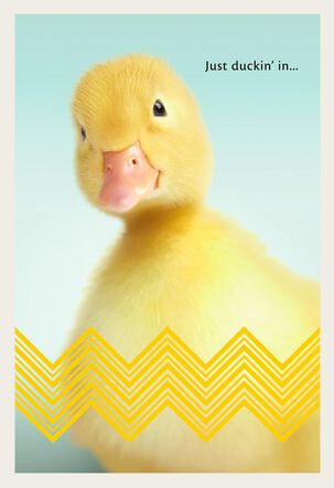 Duckling Hello Easter Card