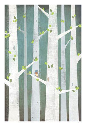 Birch Trees With Bird Sympathy Card