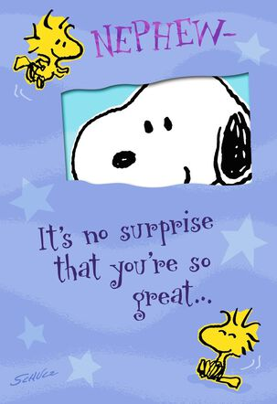 Peanuts® You're So Great Birthday Card for Nephew