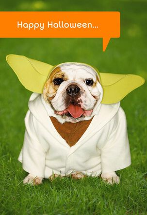Star Wars™ Yoda™ Dog Halloween Card
