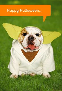 Star Wars™ Yoda™ Dog Halloween Card,