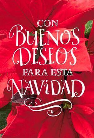 Buenos Deseos en Navidad, Pack of 6
