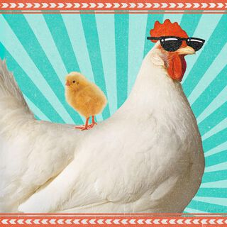 Awesome Chickens Funny Musical Father's Day Card,