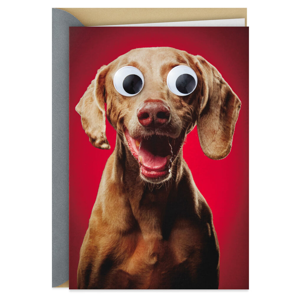 Weimaraner Dog Love You Like Crazy Funny Valentine S Day Card
