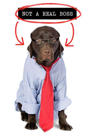 Dog in Tie Funny Boss's Day Card