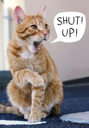 Shut Up! Funny Birthday Card